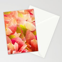 petals /Agat/  Stationery Cards