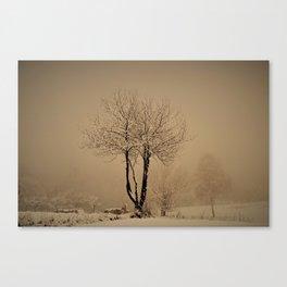 Sepia winter Canvas Print