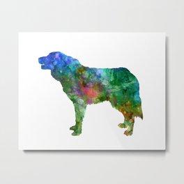 Bosnian and Herzegovinian Croatian Shepherd Dog in watercolor Metal Print