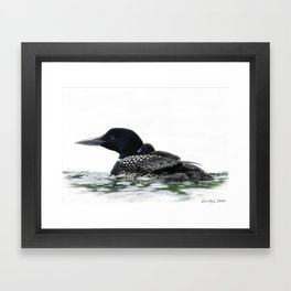 Northern Loon Mother with chick on back Framed Art Print