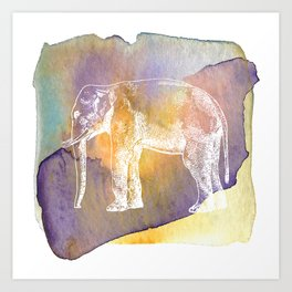 Color Spot Safari Elephant Art Print
