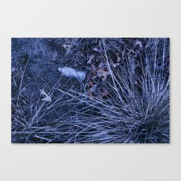 water bottle in dunes Canvas Print
