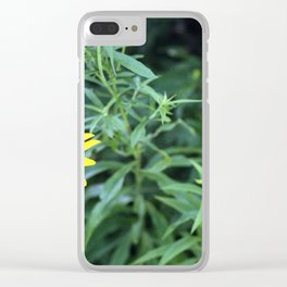 Black Eyed Susan. Clear iPhone Case
