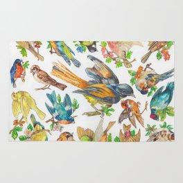 Birds, Birds, Birds Rug