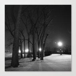 Winter Night's Walk Canvas Print
