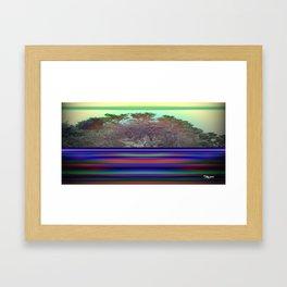 Point Lobos By Kenny Rego Framed Art Print