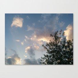 Ground to Sky Canvas Print