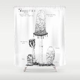 Learn the Shaggy Mane Shower Curtain