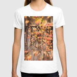 Vitaceae family ivy wall abstract Parthenocissus quinquefolia T-shirt