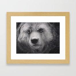 Bear Charcoal Framed Art Print