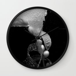 Kelp Wall Clock