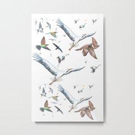 Migratory Birds - Bird migration Illustration Metal Print