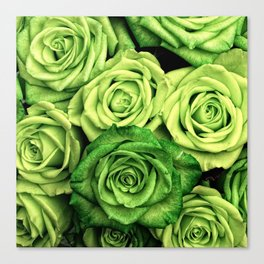 Green Roses Canvas Print