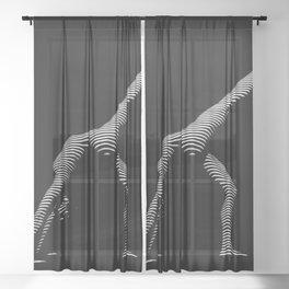 9466s-DJA BW Zebra Striped Nude Woman Yoga Pose Sheer Curtain