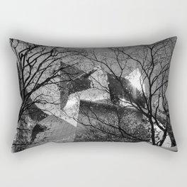 Los Angeles, Concert Hall, Frank Gehry Rectangular Pillow