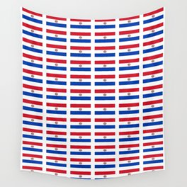 flag of paraguay 2 -paraguyan,asuncion,spanish, south america, latin america,pan flute,coffee,forest Wall Tapestry