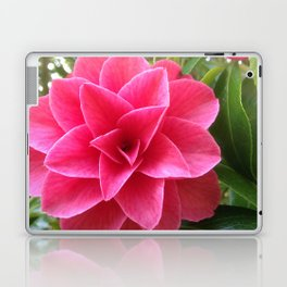 Rosé Tea Rose Laptop & iPad Skin