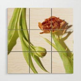 Bud & Bloom Wood Wall Art