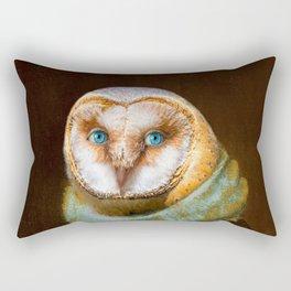 Animals - Funny Owl Painting Rectangular Pillow