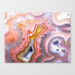 Agate Gem slice Canvas Print