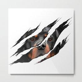 Rottweiler 3D torn effect illustration Metal Print