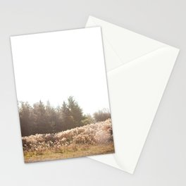 Wild Bliss Stationery Cards