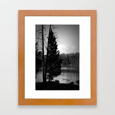 Tree on the Yellowstone Framed Art Print