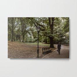 Central Park Hidden Stories Metal Print