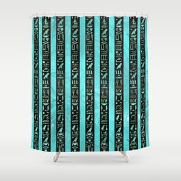 Golden  Egyptian hieroglyphs on frosted glass Shower Curtain