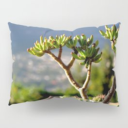 suculent at sunset Pillow Sham