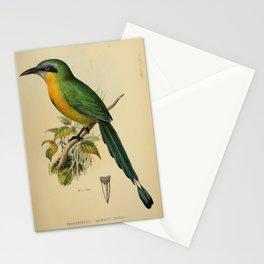 Keel billed Motmot Stationery Cards