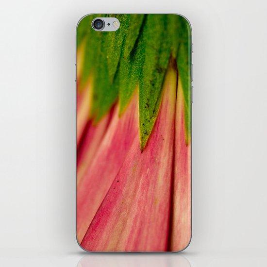 Petals of Pink iPhone & iPod Skin