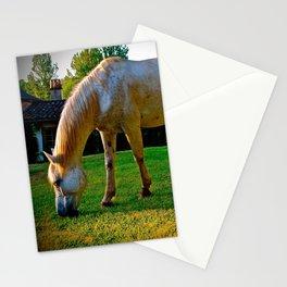 Golden Palomino Stationery Cards