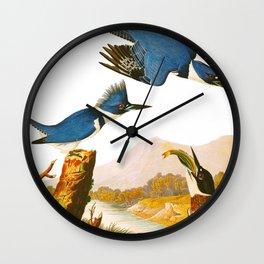 Belted Kingfisher Bird Wall Clock