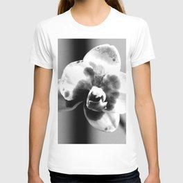 Gather 'Round - BW T-shirt
