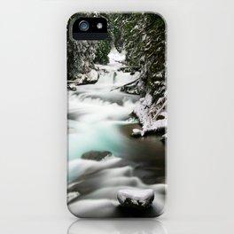 The Wild McKenzie River Adventure iPhone Case