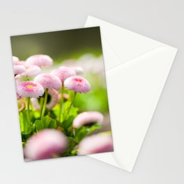 Bellis perennis pomponette called daisy Stationery Cards