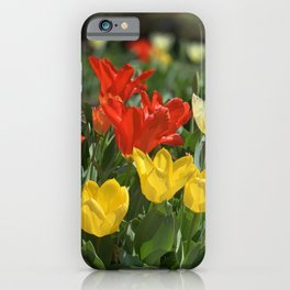 Lewes Tulips Festival iPhone Case