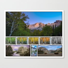 College of Nature Canvas Print