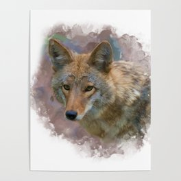 Digital painting of Coyote Portrait Poster