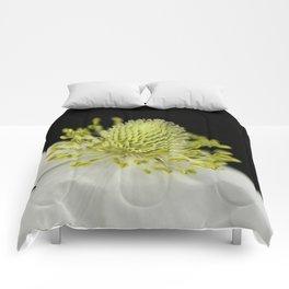 SnowDrop Macro Comforters