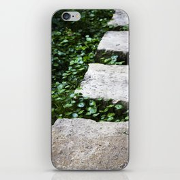 Stone Steps iPhone Skin