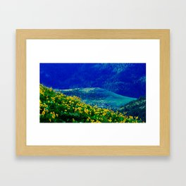 No. 3 Okanagan Sunflowers at Dawn Framed Art Print
