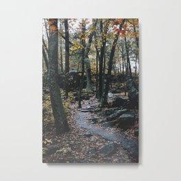 Devil's Lake State Park, I Metal Print