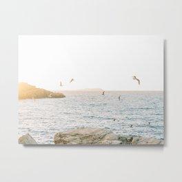 Seagulls Flying During Sunset | Fine Art Travel Photography | Shot on Ibiza Metal Print