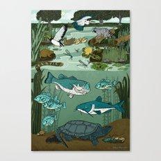 Ecosystem: Pond Canvas Print