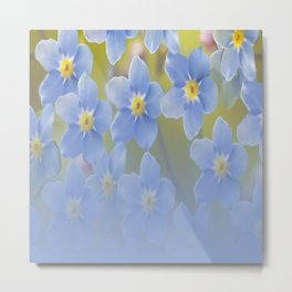 Forget-me-not flowers - summer beauty #society6 #buyart Metal Print