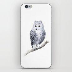 Snowy Fowl iPhone & iPod Skin