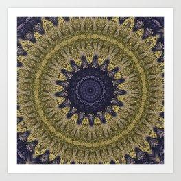 Better than Yours Colormix Mandala 3 Art Print