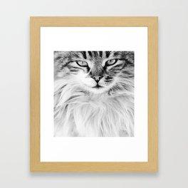 KEDİ Framed Art Print